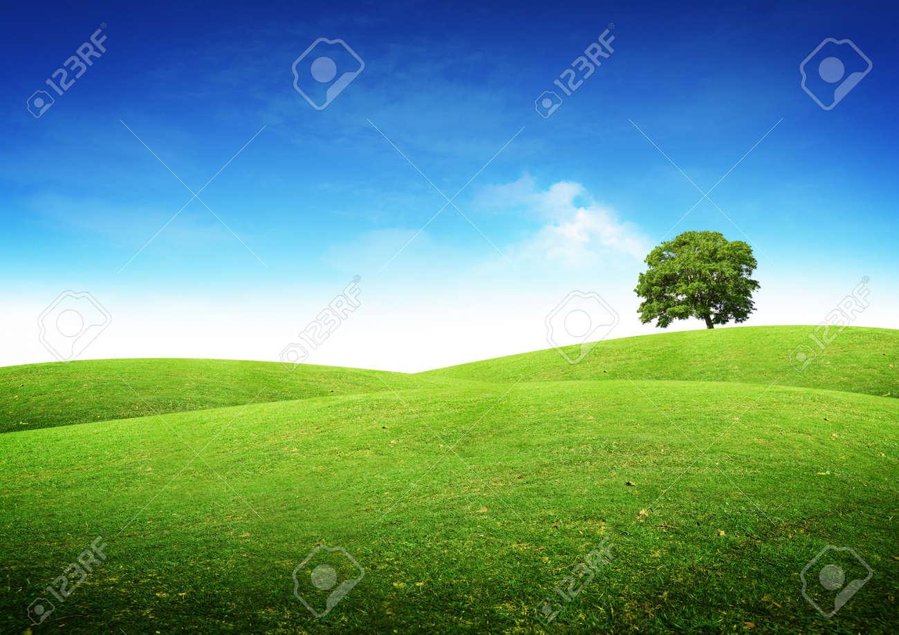 Green summer landscape scenic view. Stock Photo - 9148506