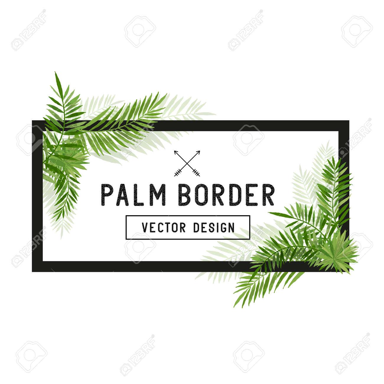 Tropical Palm Leaf Border Vector. Summer Palm tree leaves around a border. Vector illuatration. - 54312251