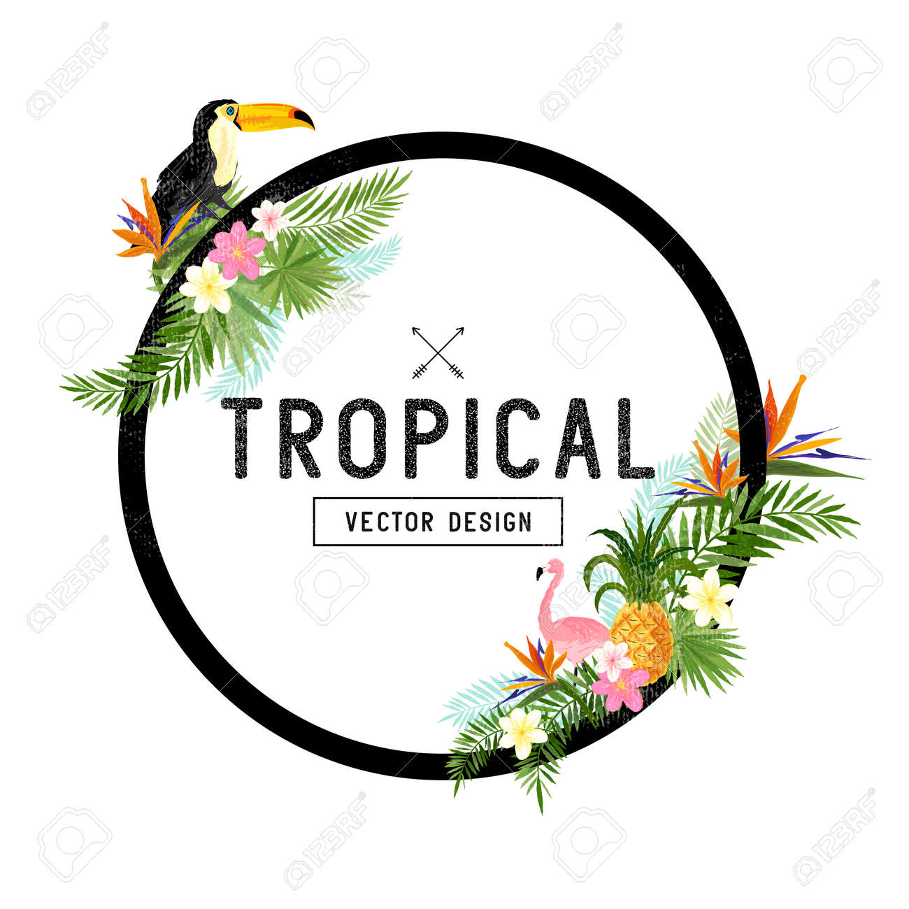 Tropical Border Design. tropical hand drawn elements including bird of paradise flower, Toucan and flamingo birds and tropical floral elements. - 54312252