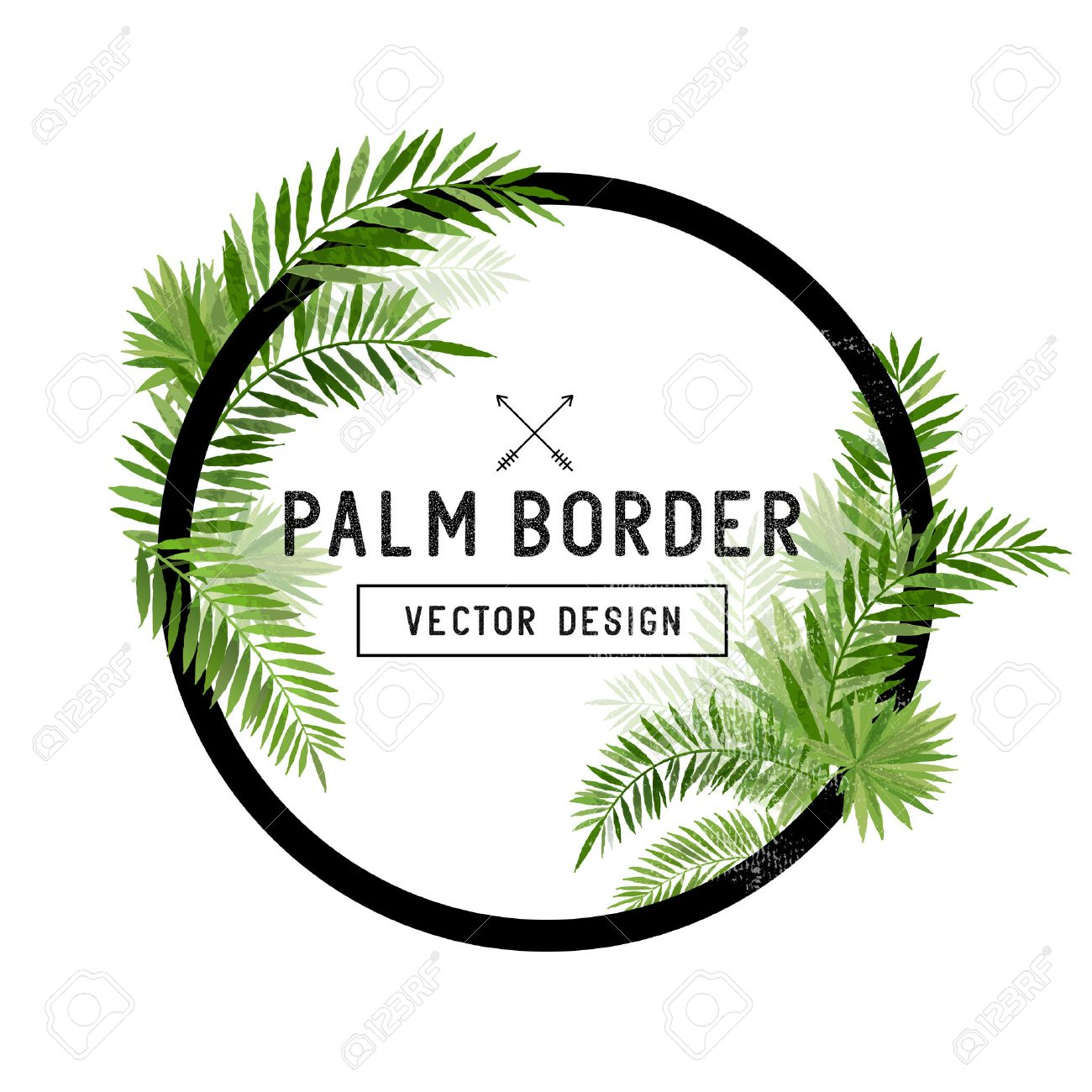 Tropical Palm Leaf Border Vector. summer Palm tree leaves around a circle border. Vector illuatration. - 54312286