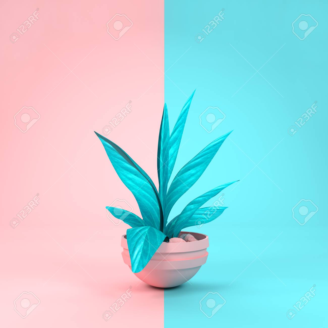 A Pastel Pink And Cyan House Plant Matching Background Colours