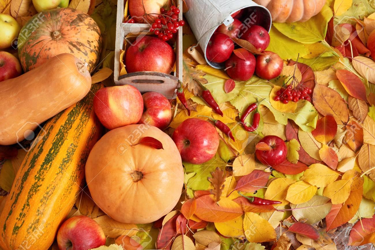 Herbst Hintergrund Obst Und Gemuse Auf Gelben Gefallenen Blatter