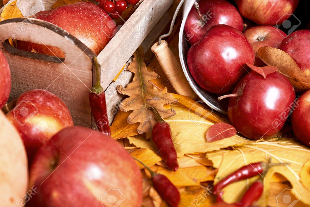 Herbst Hintergrund Obst Und Gemuse Auf Gelbe Blatter Gefallen