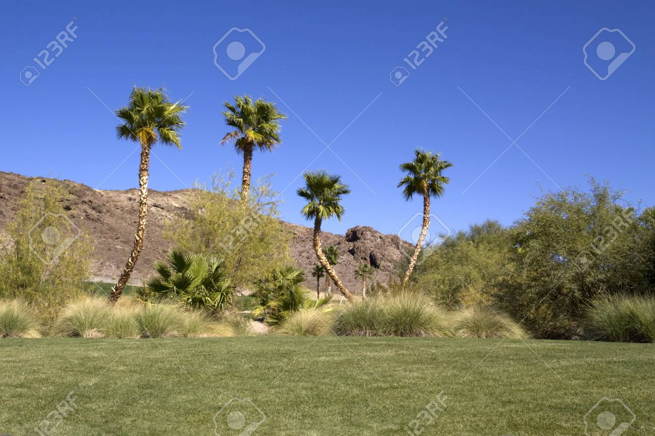 Beautiful golf course on a sunny day Stock Photo - 6797930