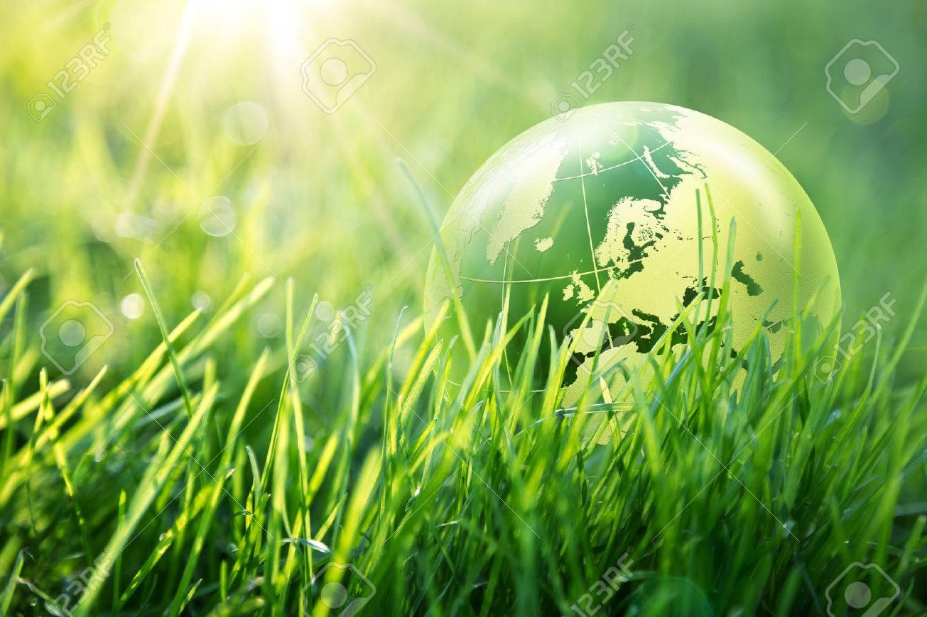 world environmental concept - Europe - 27847935