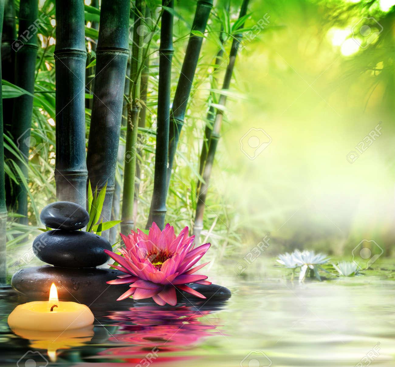 Ce soir en garde de nuit - Page 6 33104617-Massage-dans-la-nature-Lily-pierres-bambou-notion-zen-Banque-d%27images