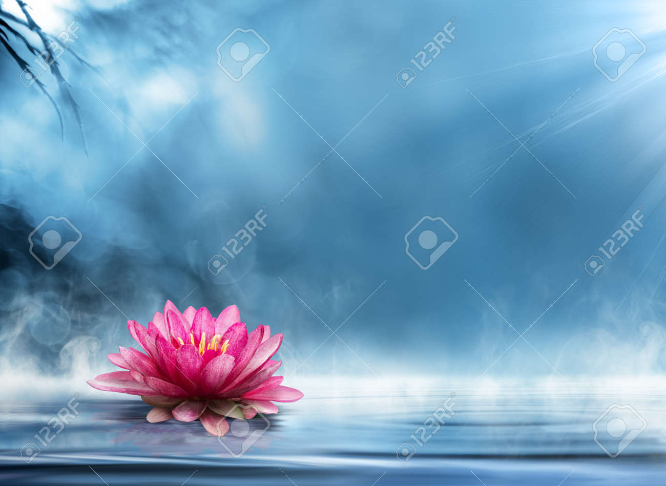 spirituality zen in peaceful scenery stock photo picture and
