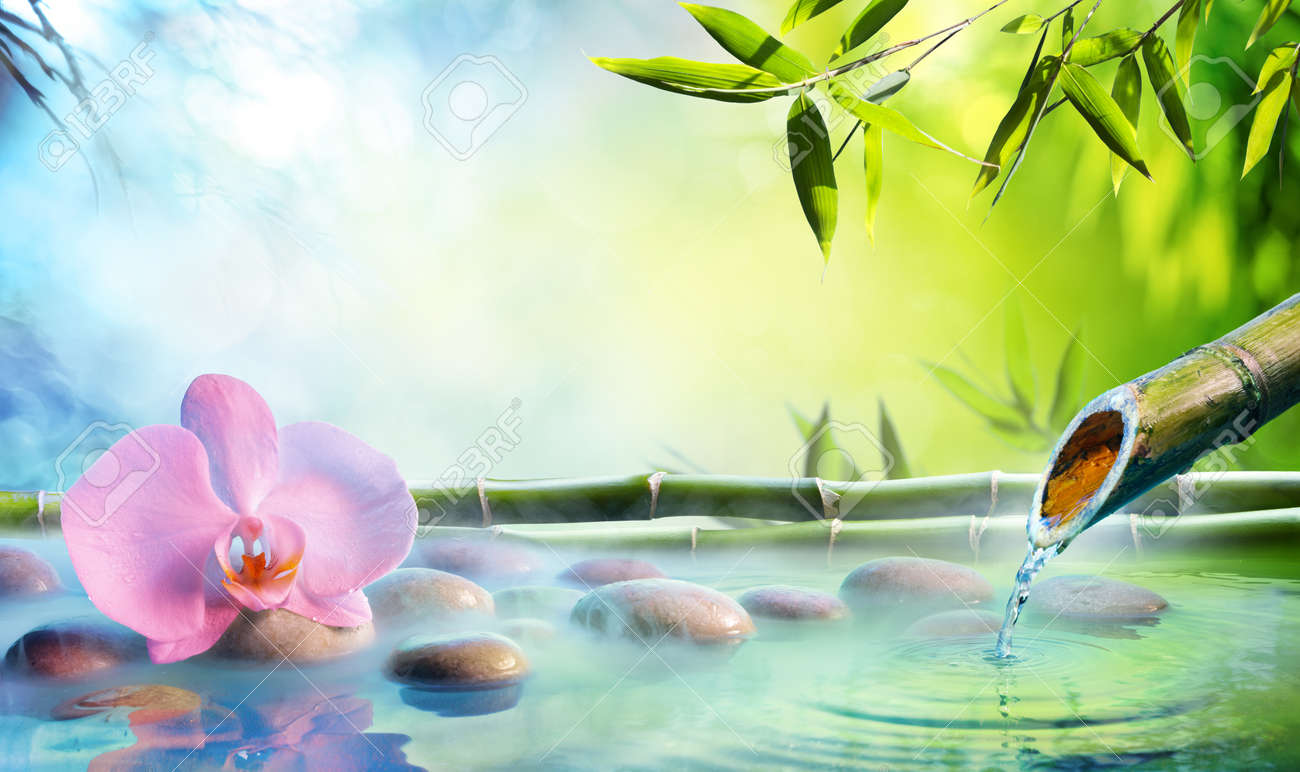 Zen Garden - Orchid In Japanese Fountain With Rocks And Bamboo - 104828181