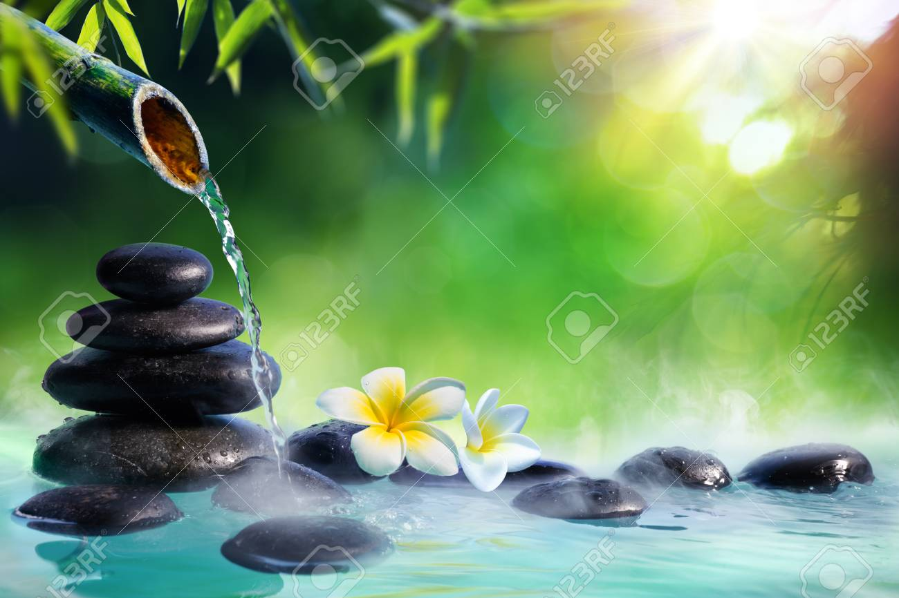Plumeria Flowers In Japanese Fountain With Stones And Bamboo Massage - Zen Garden - 104828182