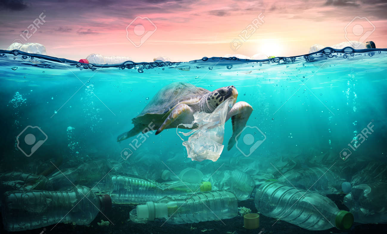 Plastic Pollution In Ocean - Turtle Eat Plastic Bag - Environmental Problem - 119611317