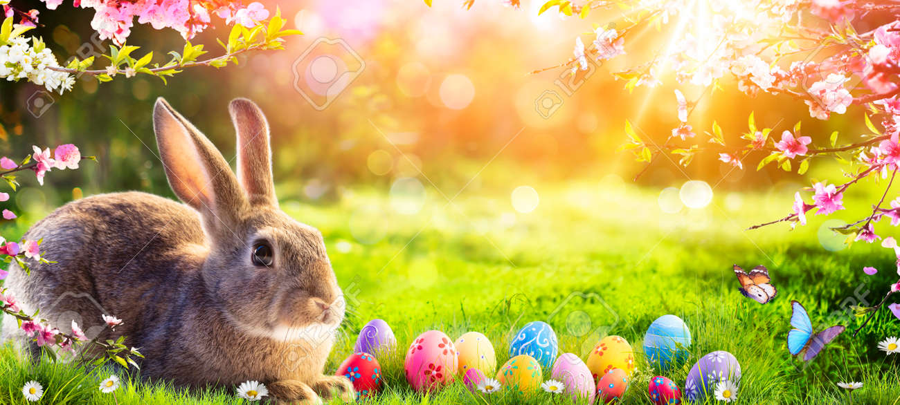 Easter - Cute Bunny In Sunny Garden With Decorated Eggs - 164196631