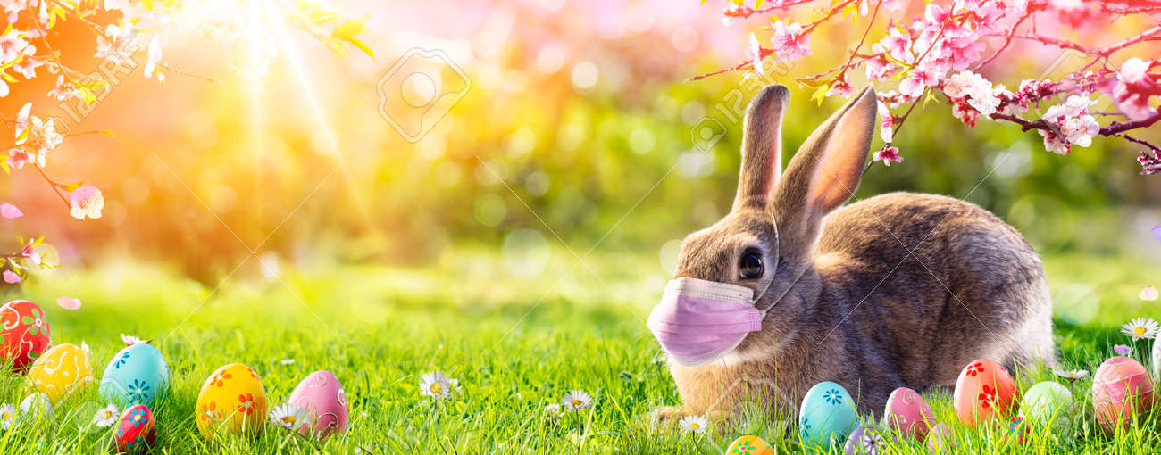 Cute Bunny With Medical Mask - Easter Pandemic Concept - 164578830