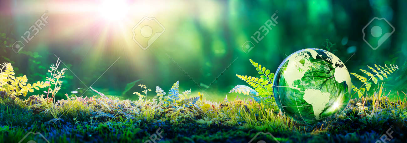 Environment Concept - Hands Holding Globe Glass In Green Meadow With Sunlight - 168103874