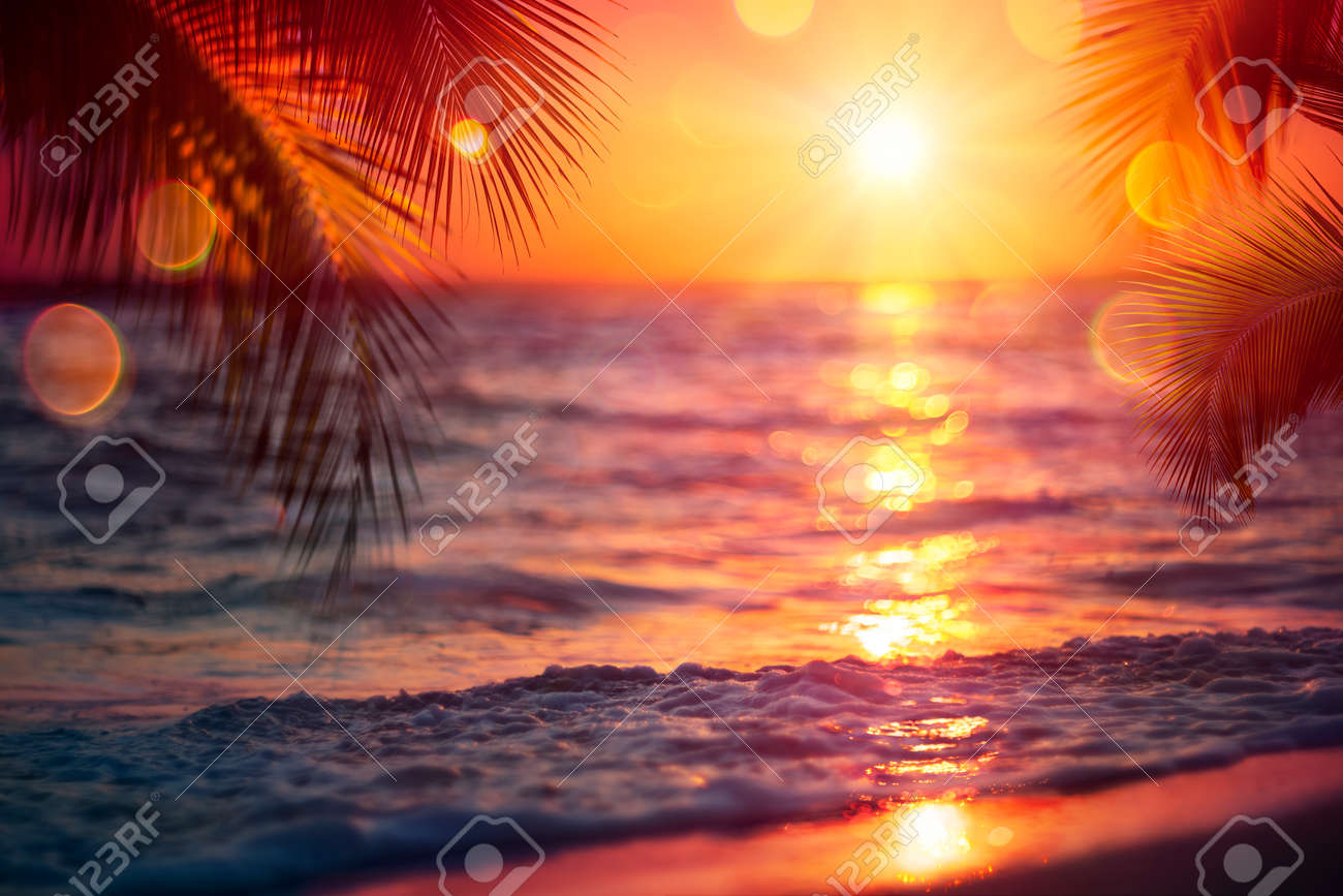 Blurred Sunset On Sea With Palm Leaves - Abstract Defocused Summer Vacation Background - 169657751