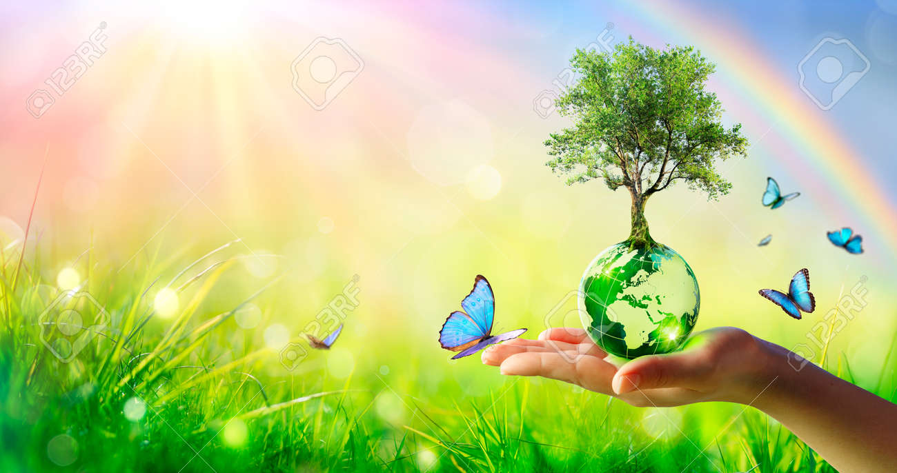 Tree On Planet - Environment Concept - Hand Holding Green Globe With Butterflies And Rainbow - 169657754