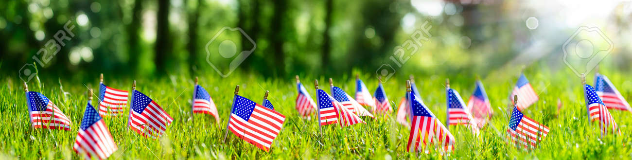 American Flags In Grass - Defocused Abstract Memorial Day background - 169657760