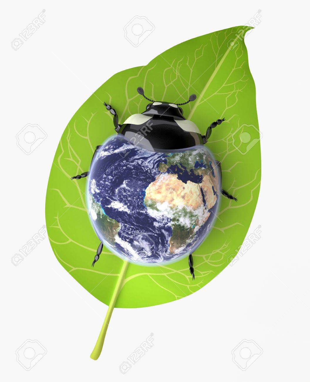 The Three-dimensional Beetle symbolizing Environmental Awareness and an Acceptance of Responsibility for the Care of our Earth; Globe mapping image provided by NASA http://visibleearth.nasa.gov/view.php?id=57735 Stock Photo - 18560472