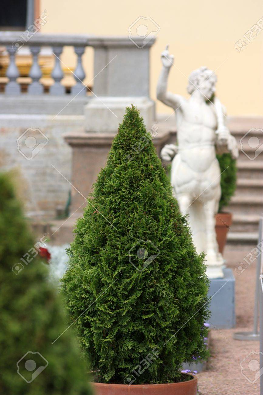 ornamental tree cone amid statues and banisters Stock Photo - 17758094
