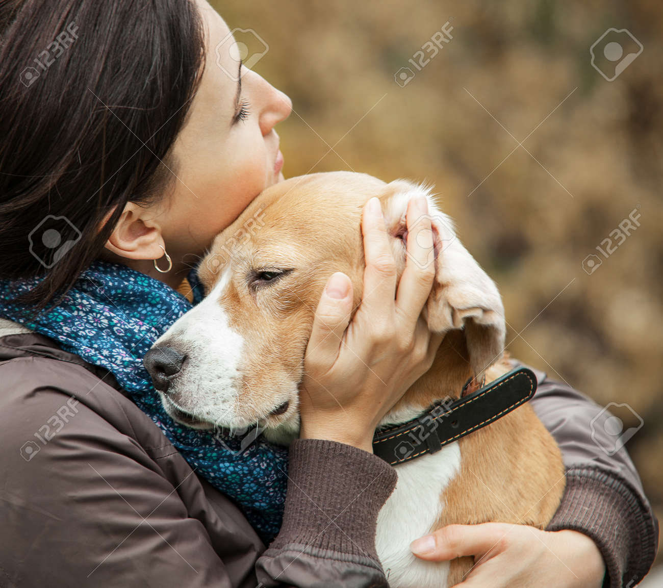 Popular Sea Beagle Adorable Dog - 45712085-animal-beagle-beauty-breed-canine-caucasian-cute-dog-ears-emotional-energy-expression-face-female-fr  Pictures_93934  .jpg