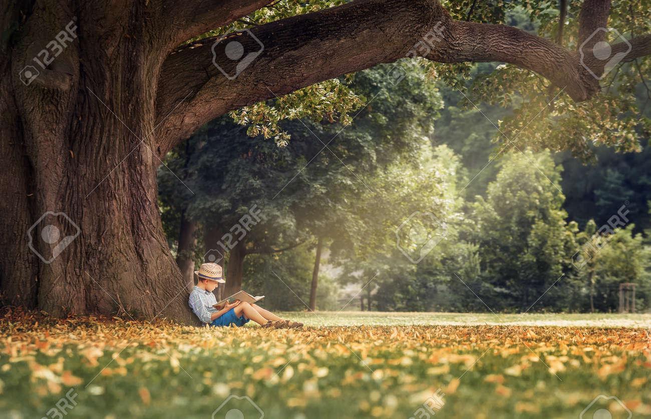 Little boy reading a book under big linden tree - 60765760