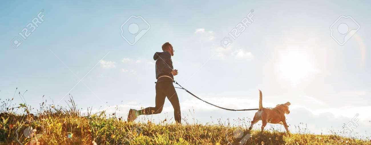 Man runs with his beagle dog at sunny morning. - 114529750