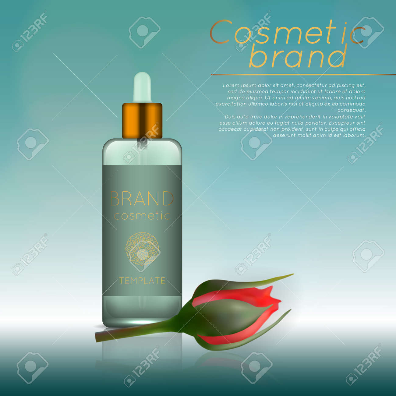 Beauty Products Advertisement Template Royalty Free Cliparts - Product ad template