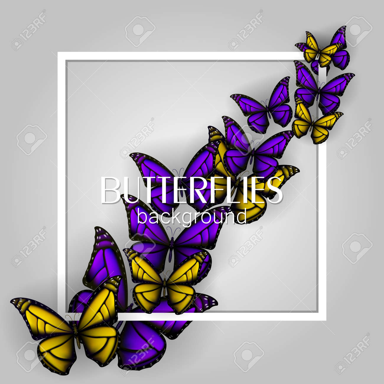 Square white frame banner with colorful butterflies light background - 114806841