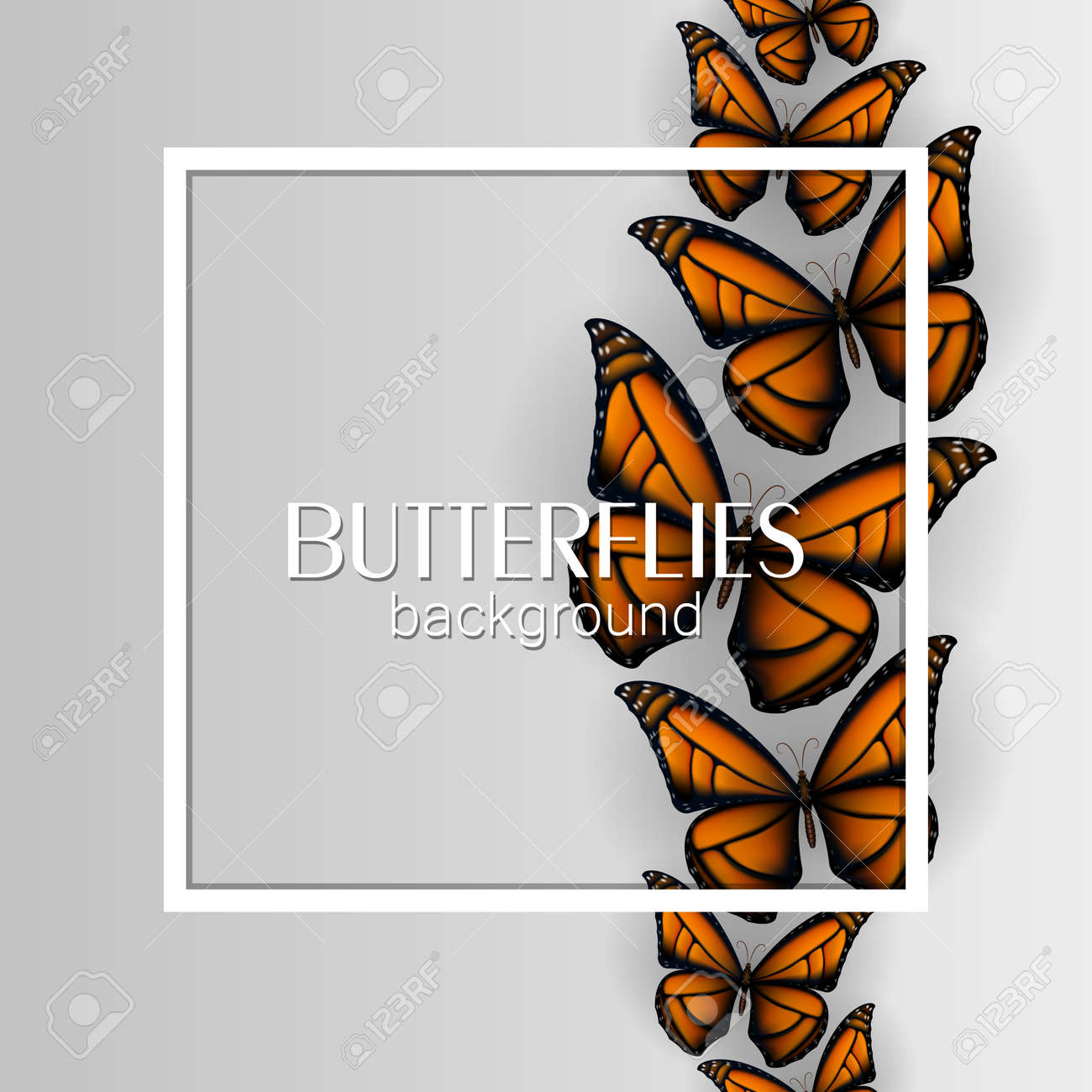 Square white frame banner with colorful butterflies light background - 105090852