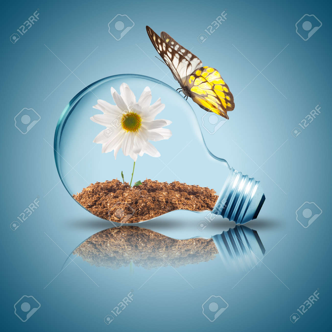 Light bulb with white flower inside and butterfly - 15585294