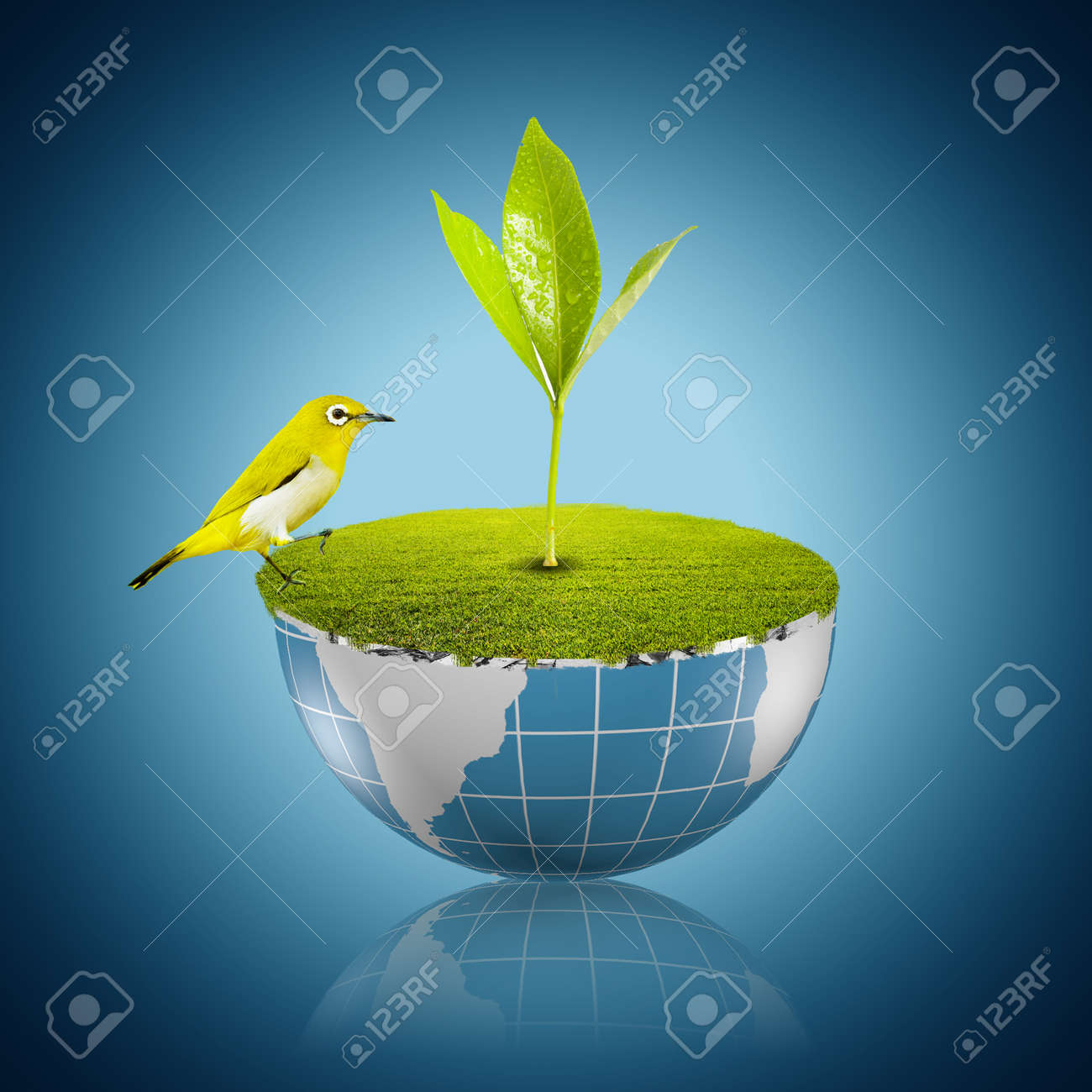 Plant growing on globe with yellow bird Stock Photo - 17882387