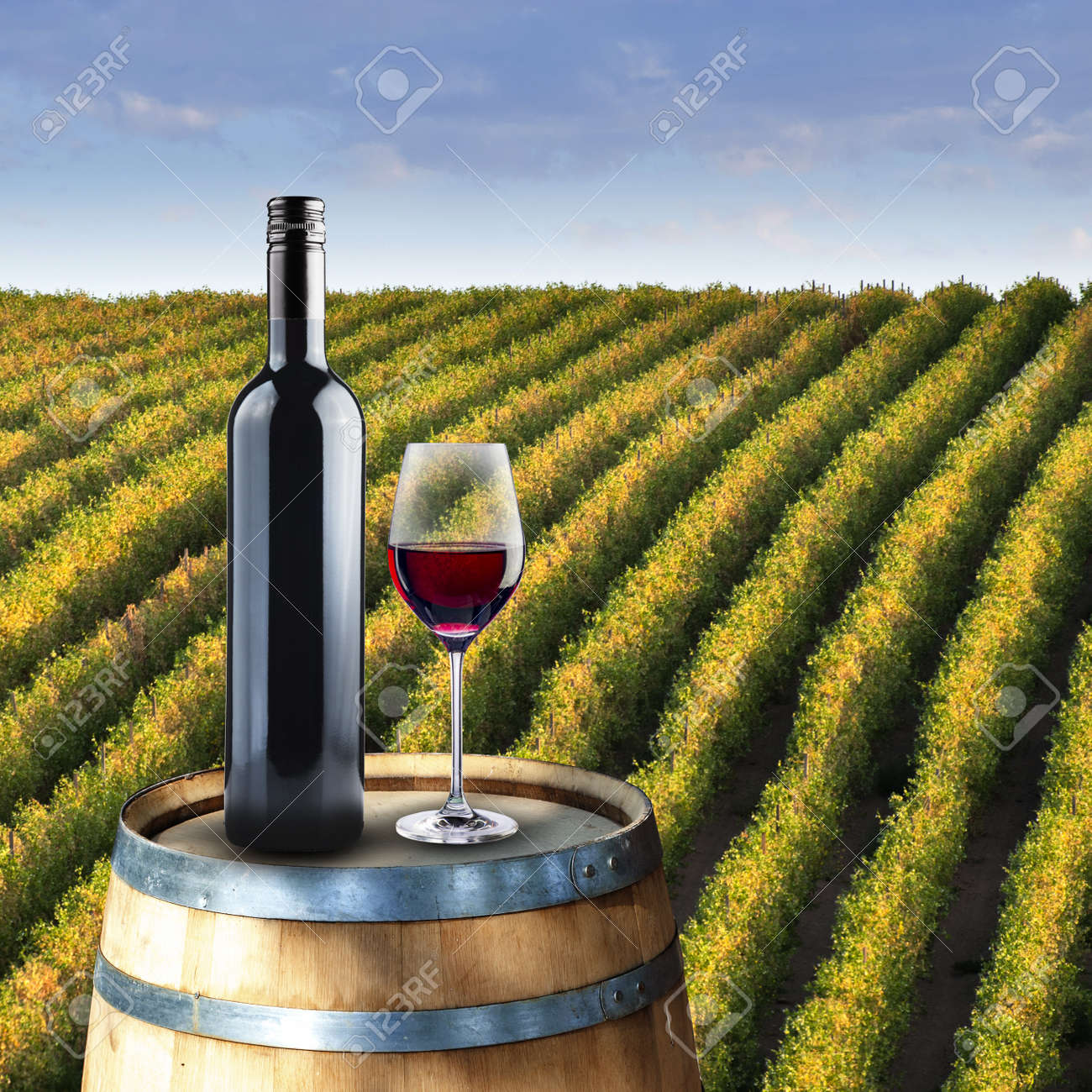 Bottle and glass of wine on wood barrel with vinyard background Stock Photo - 18249831