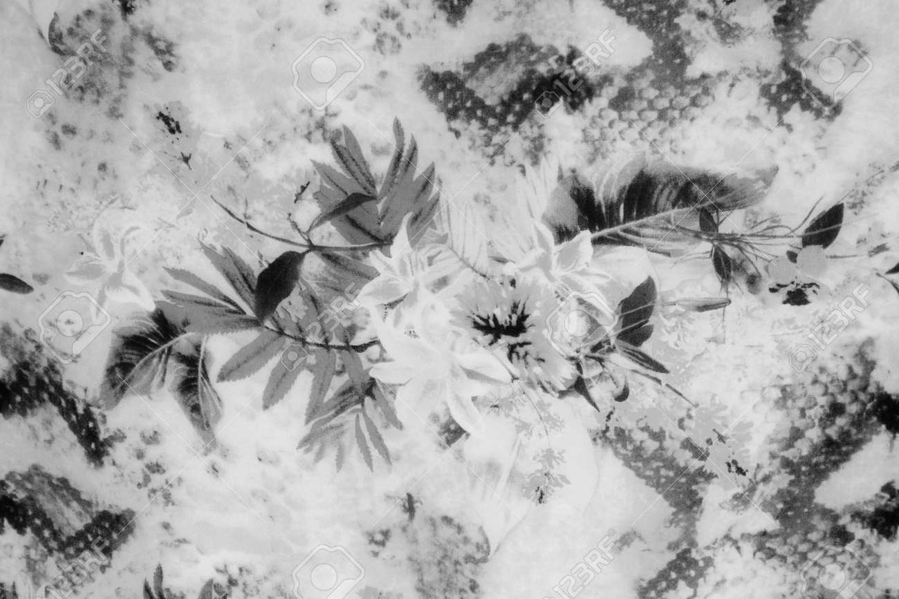Romantic vintage flower black and white background stock photo 41858825