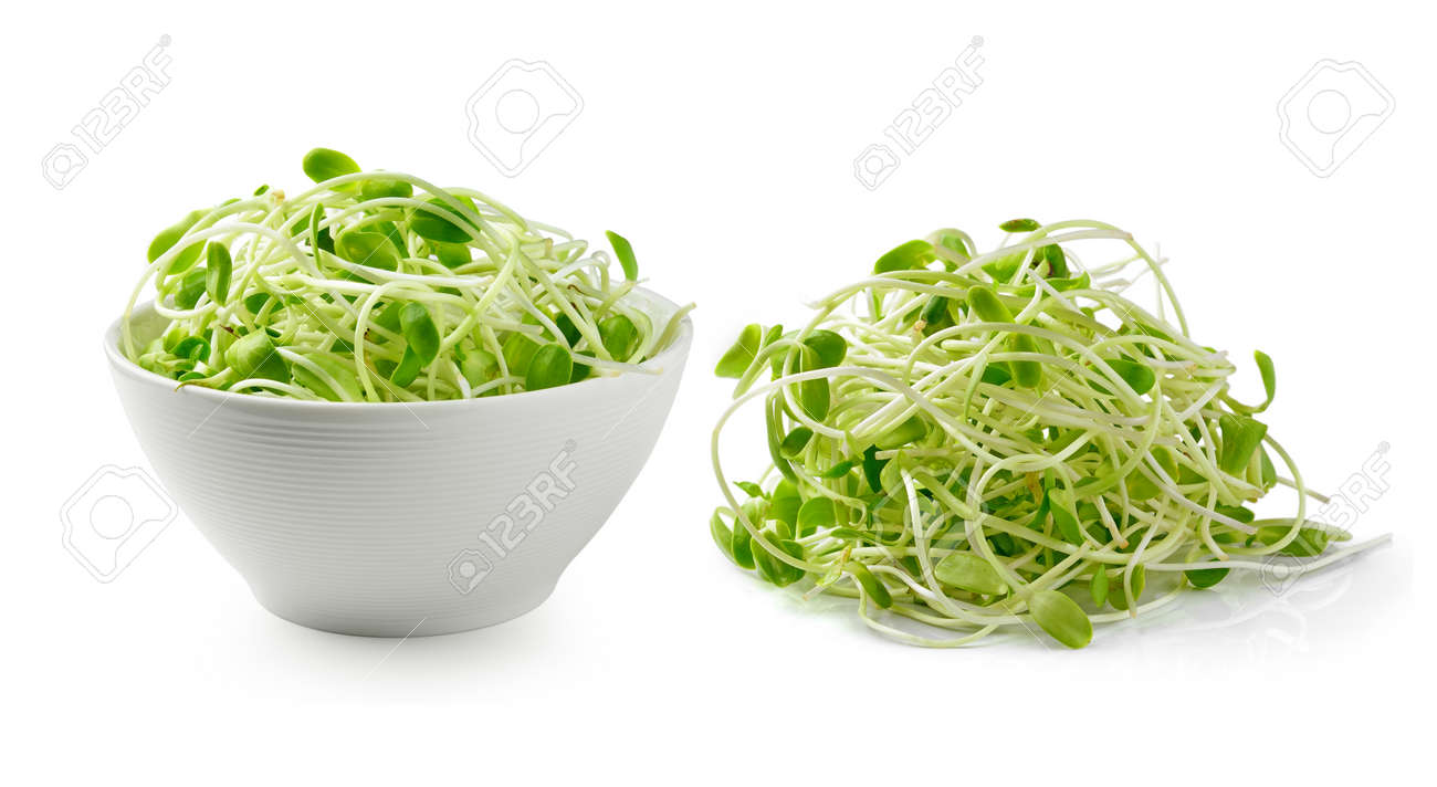 How to Grow Sunflower Sprouts, A Tasty Chorophyll-Rich Protein Source