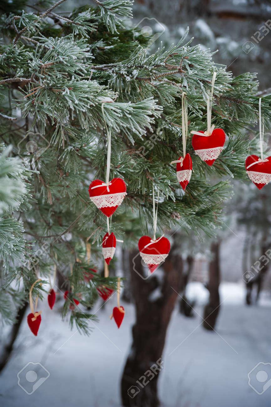 9a9cf4b0980 En La Rama Nevada De Los árboles De Navidad
