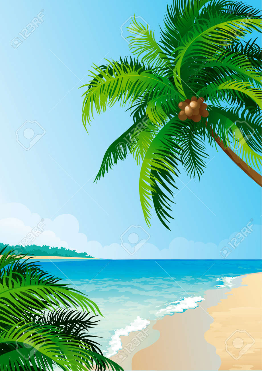 Coconut palm trees. Stock Vector - 10330911
