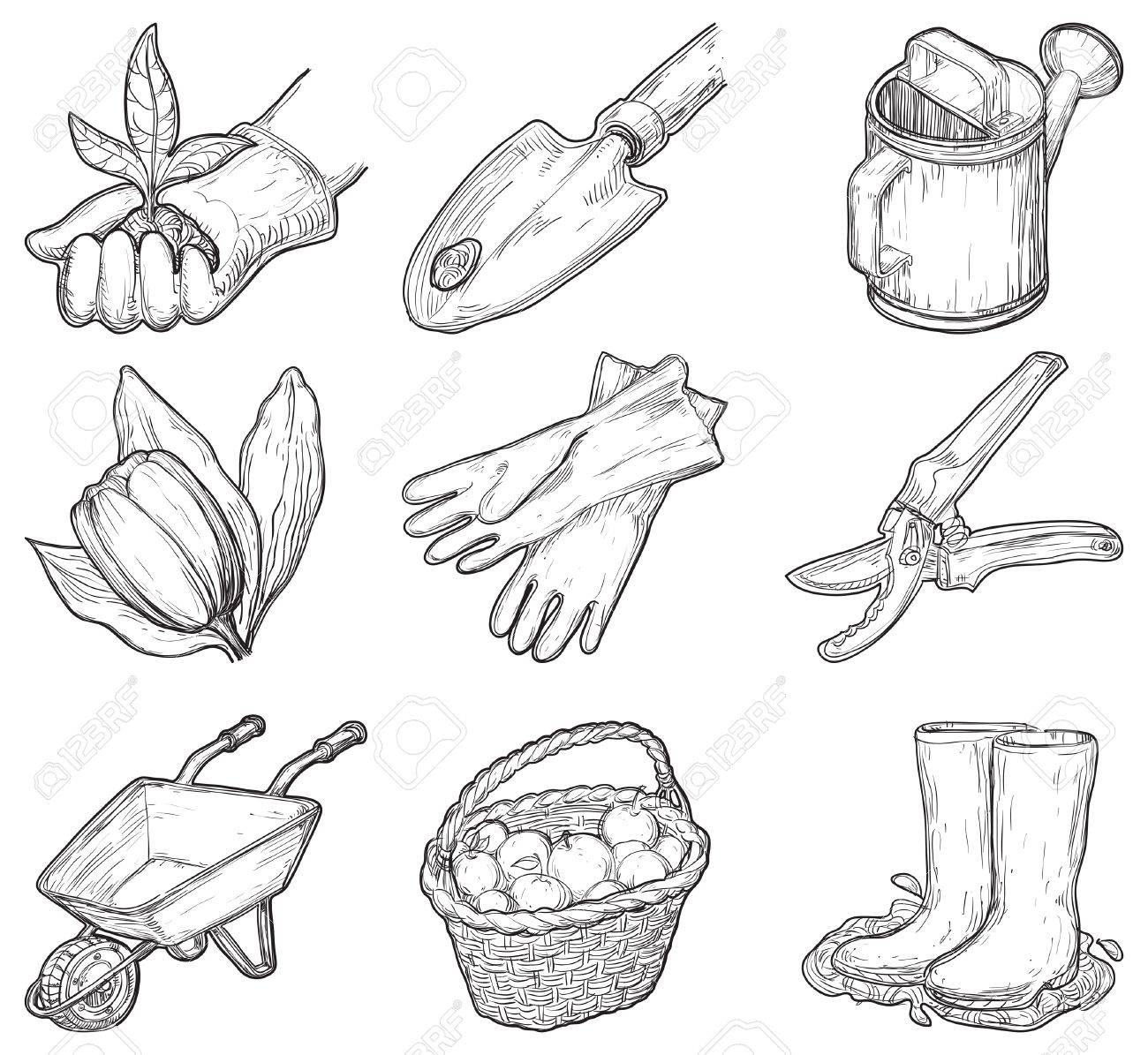 Wonderful Garden Tools And Things Vector Set Of Garden Icons At At Engraved  ZO75