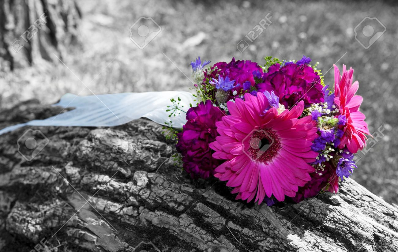 A beautiful bridal bouquet left sitting on a tree trunk black and white image