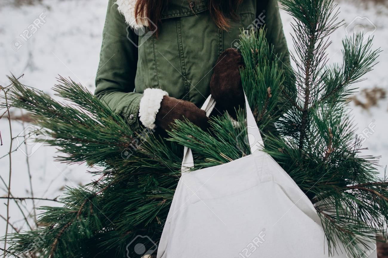 Christmas Forest Project Bag