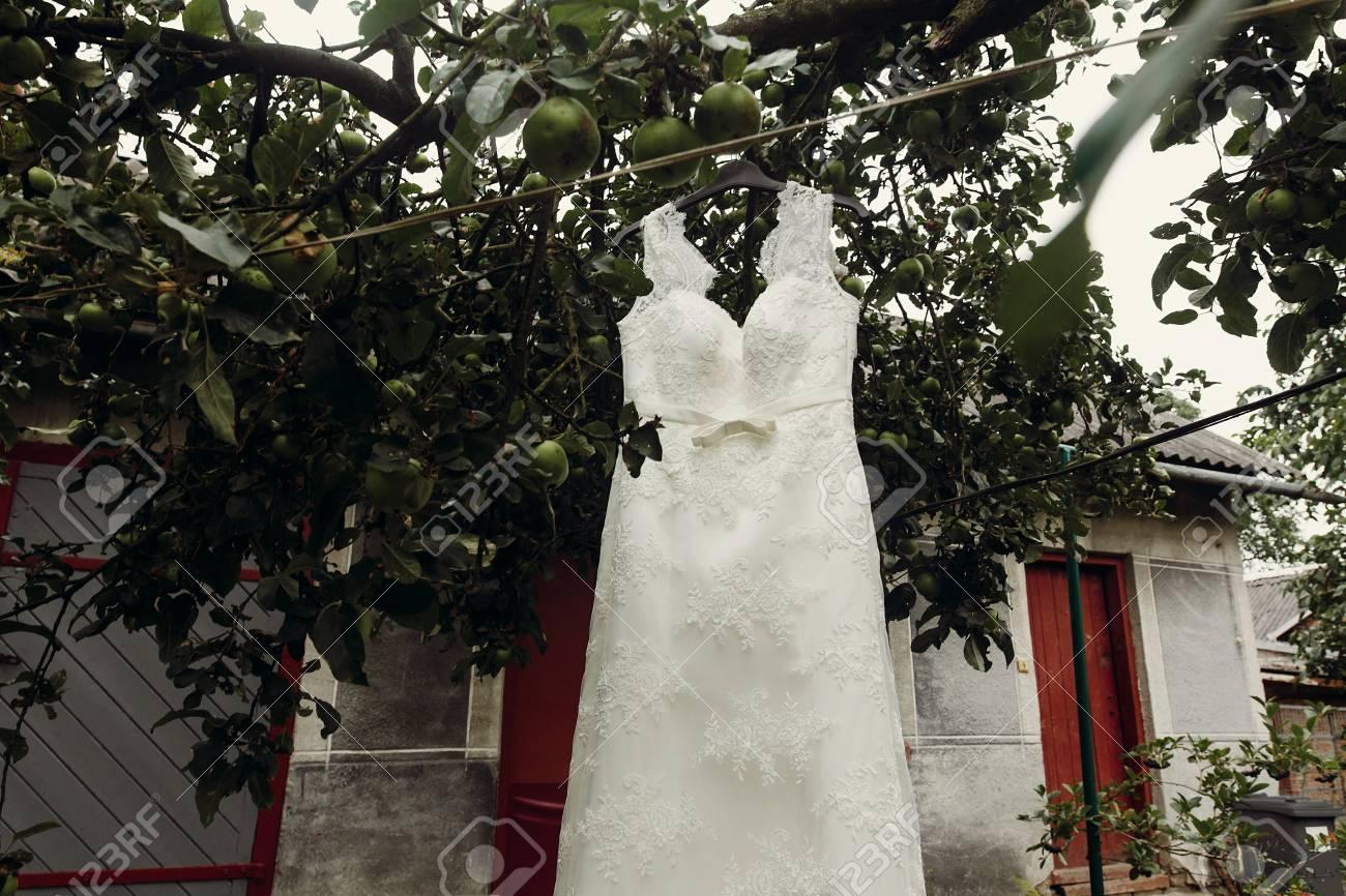 Elegant, Stylish White Wedding Dress Hanging Outdoors Near Trees ...