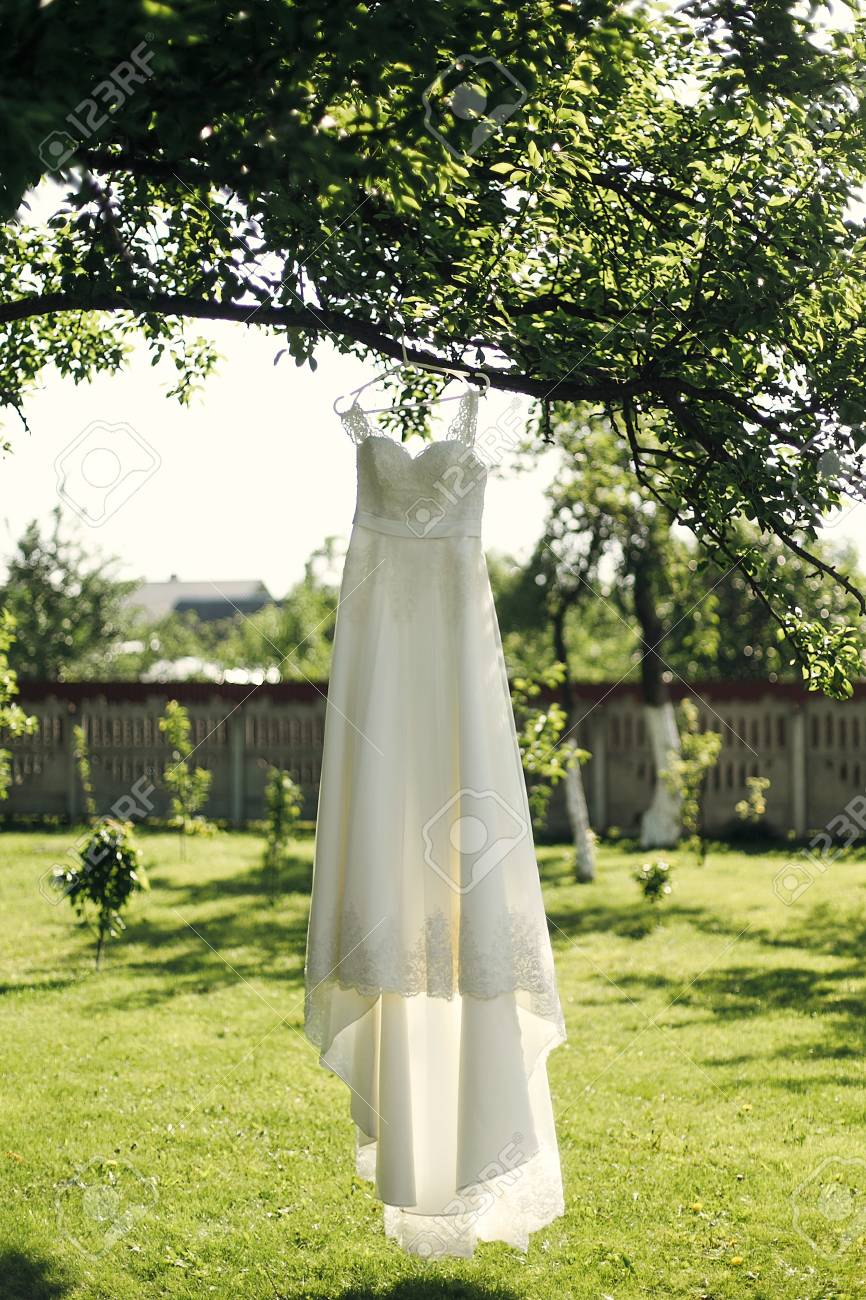 Beautiful Wedding Dress Hanging On Tree In Summer Garden Morning Preparation Space For Text: Morning Garden Wedding Dresses At Websimilar.org