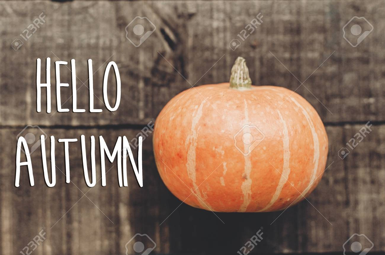 Hello Autumn Text Greeting Card Simple Fall Image Flat Lay Stock Photo Picture And Royalty Free Image Image 86264518