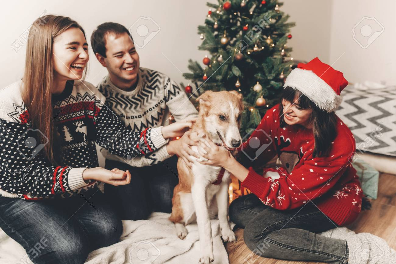 happy family in stylish sweaters and cute dog having fun at christmas..