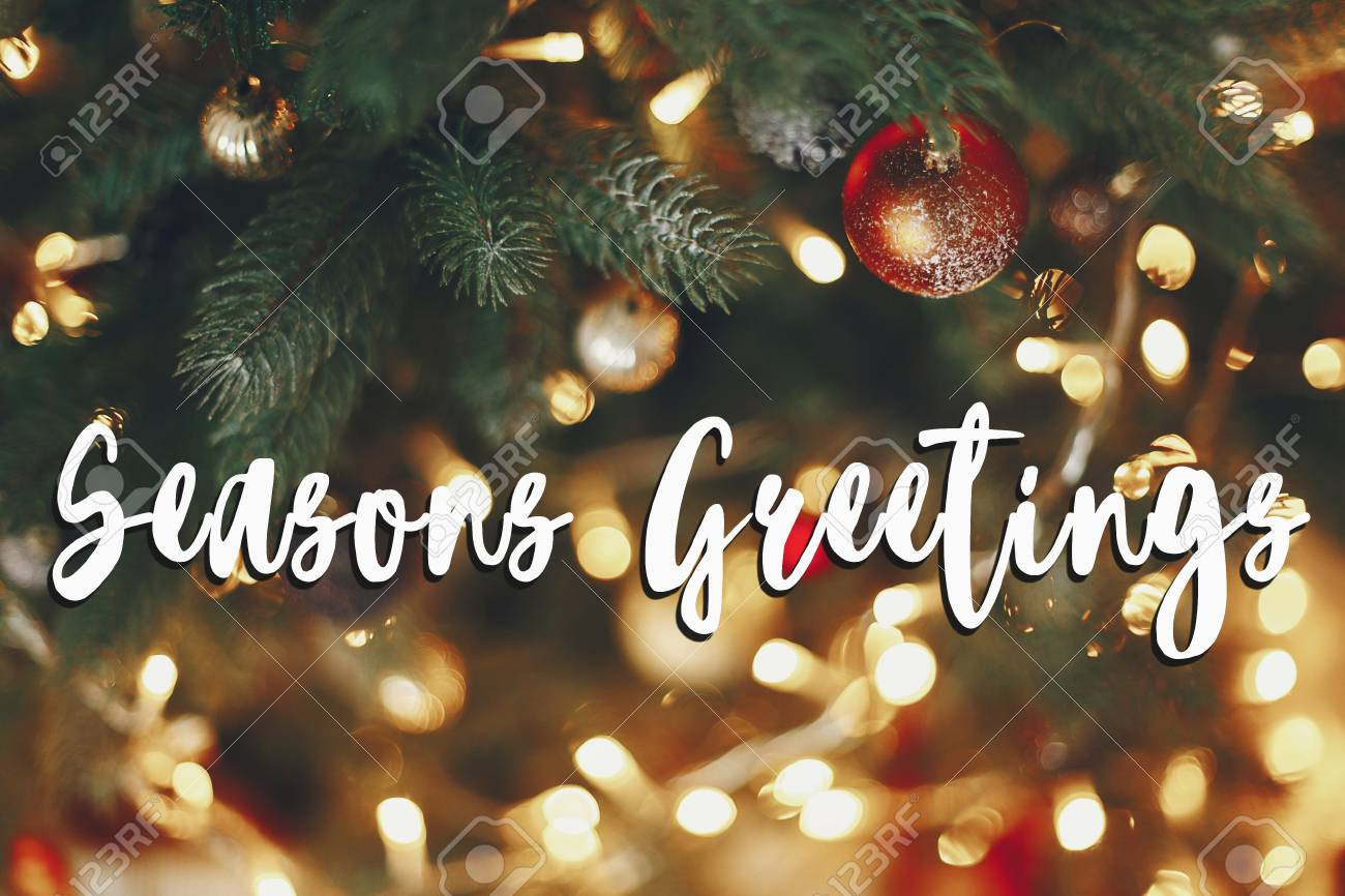 Seasons greetings text beautiful stylish christmas tree with seasons greetings text beautiful stylish christmas tree with garland lights and golden ornaments space m4hsunfo