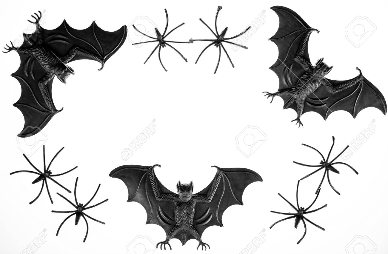 spooky halloween border image with toy vampire bats and spiders black and white photograph of