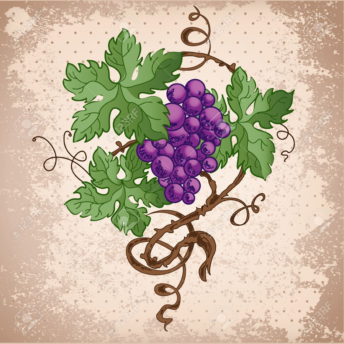 Alcohol Draw: Illustration Of Grapes On Grunge Background