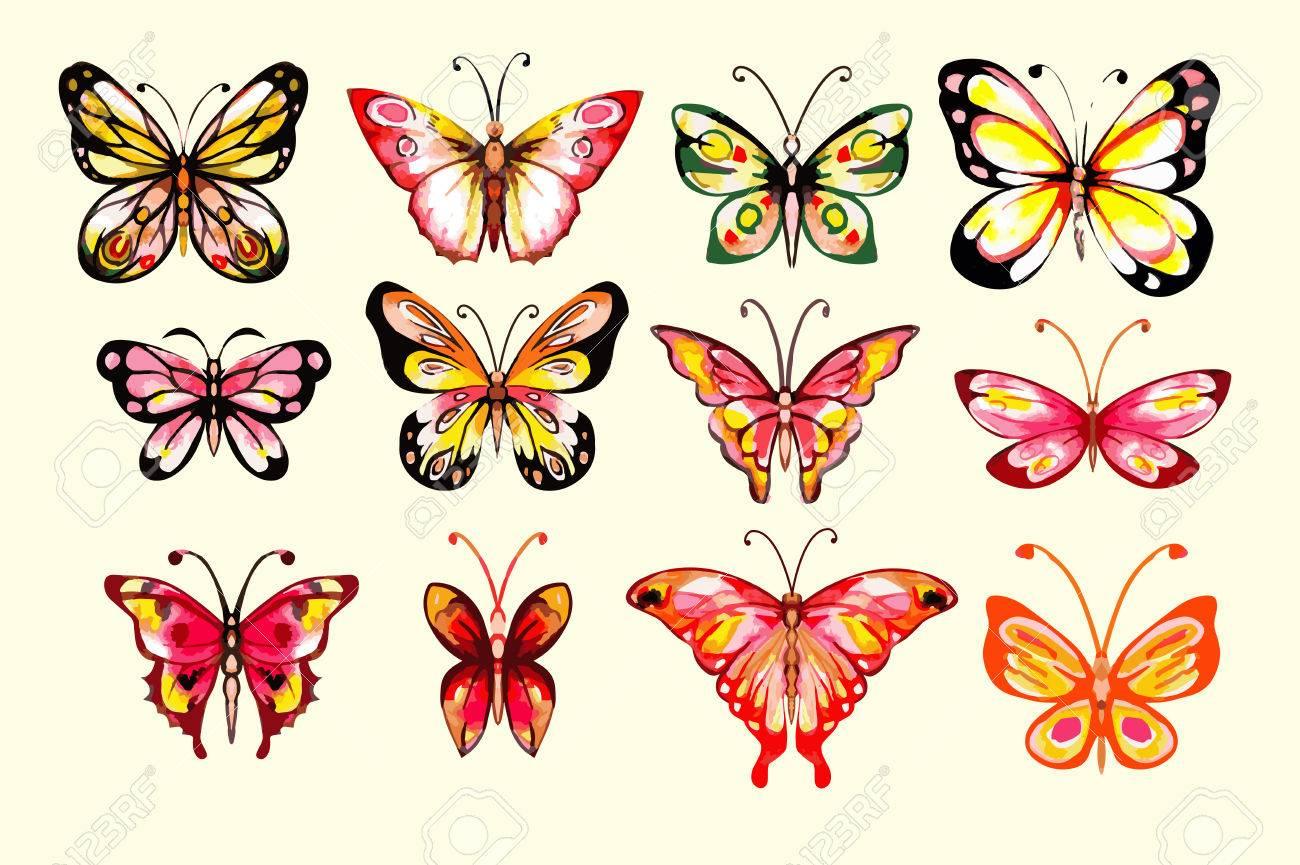 Papillons Aquarelle Fixés. Dessiné À La Main. Isolé. Les Couleurs ...