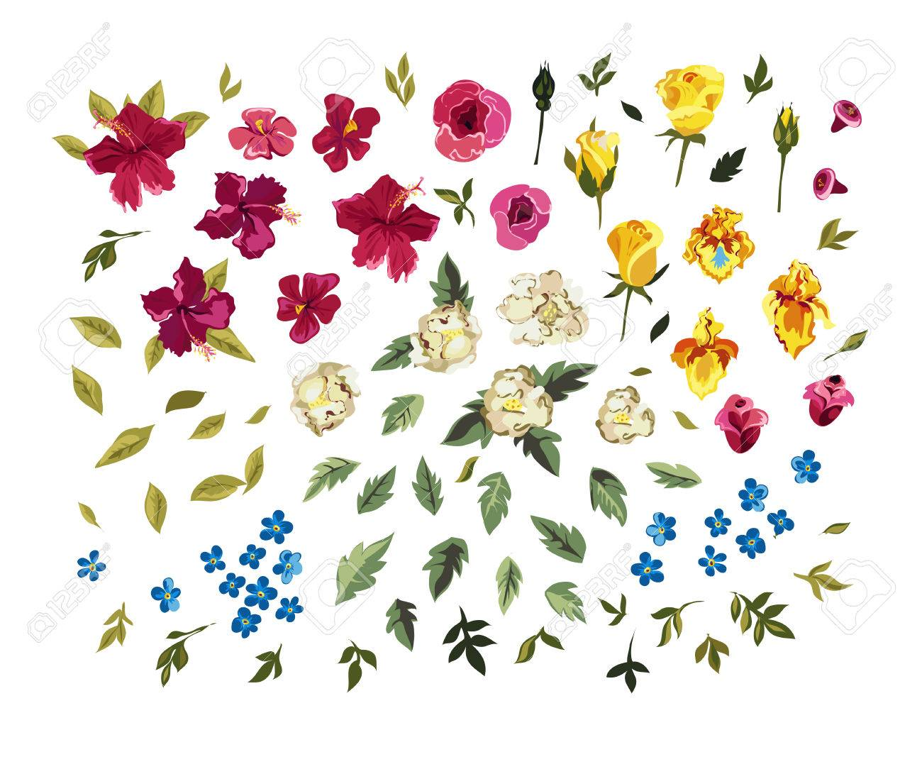 245,191 Petals Stock Illustrations, Cliparts And Royalty Free ...