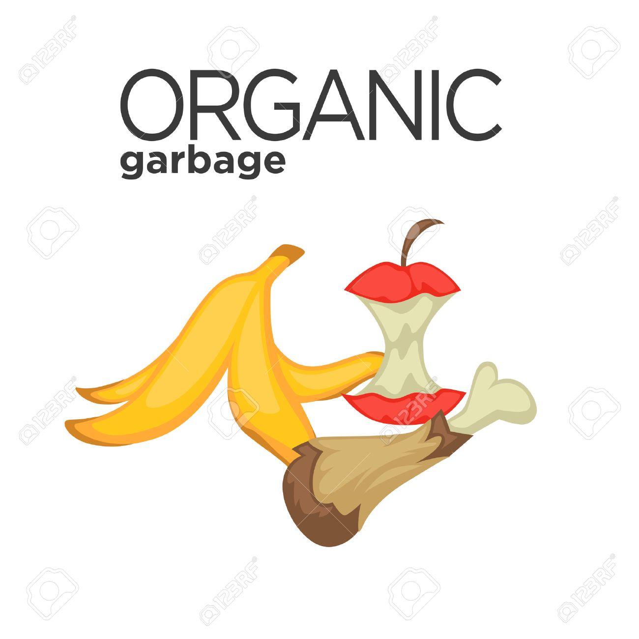 Vector symbol of organic garbage - 69923431