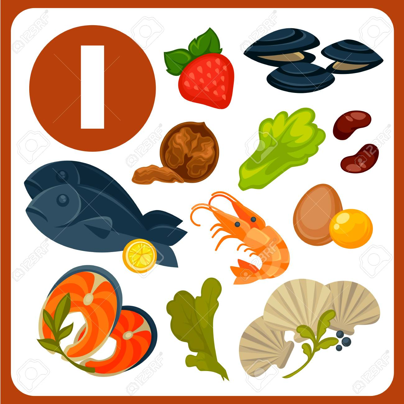 Products with high iodine content vector illustrations. Tasty oysters, red fish, king shrimps, egg yolks, fresh seaweed, nutritious walnut, sweet strawberry, lettuce leaves and healthy beans. - 82262763