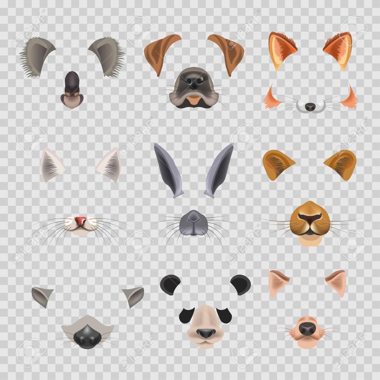 Video-Chat-Effekte Tiergesichter Flache Icons Vorlagen Von Hund ...